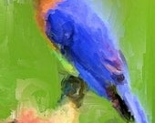 ACEO ATC - Digital Oil Painting - Blue Bird - Art by ruby