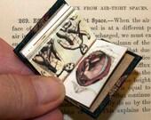 "Miniature book ""Medical Curiosities"""
