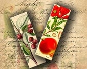 INSTANT DOWNLOAD Printable Vintage Fruits and Flowers 1 X 3 inch (Microscope Slide Size) - DigitalPerfection digital collage sheet 954