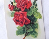 French Vintage Red Rose Postcard - Flower Birthday Card - Shabby Chic Home Decor - Collectible Flower Antique Card