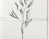 GRASS SEED Nature illustration ORIGINAL Botanical Drawing Matted Black & White Art pen and ink zen mindfulness