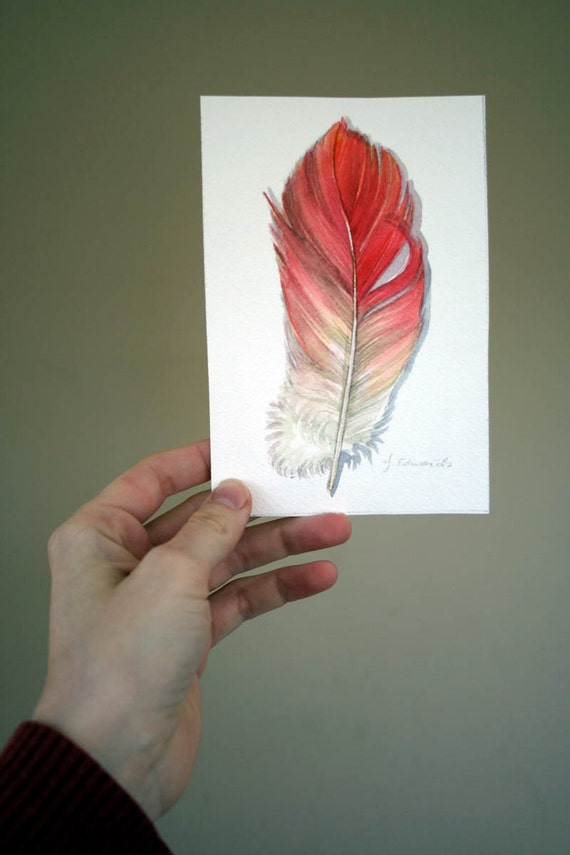 Flamingo feather painting original feather study 643 by for Flamingo feather paint