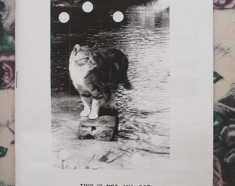 Cat zine - This is Not My Cat