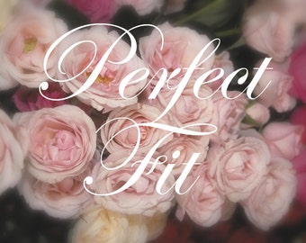Perfect Fit Try On Wedding Shoes, One Pair of Perfect Fit Bridal Shoes, Try On  Service Plus Shipping
