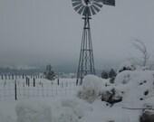 Windmill in the Snow Blank note card by Carla Garloff
