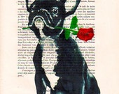 Boston Terrier with Rose, Original Illustration Digital Print Mixed Media Art Poster Acrylic Painting Holiday Decor Drawing Valentine's Day