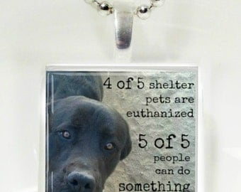 4 Out Of 5 PetsAre Euthanized Glass Pendant