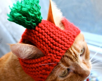 Cat Party Hat - Red and Green - Hand Knit Cat Costume