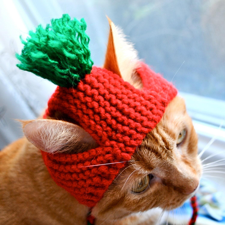 Katze im Hut Erwachsenen