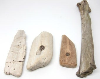 Driftwood Collection Nautical Beach Salvage Rustic Supply