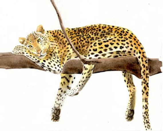 Leopard, 8x10 original watercolor painting, art & collectibles, paintings earthspalette