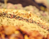 Food Photography Spices Photo - 20x30 cm - 8''x12'' - Home Wall Kitchen Decor Decoration - Multicolor Green Orange