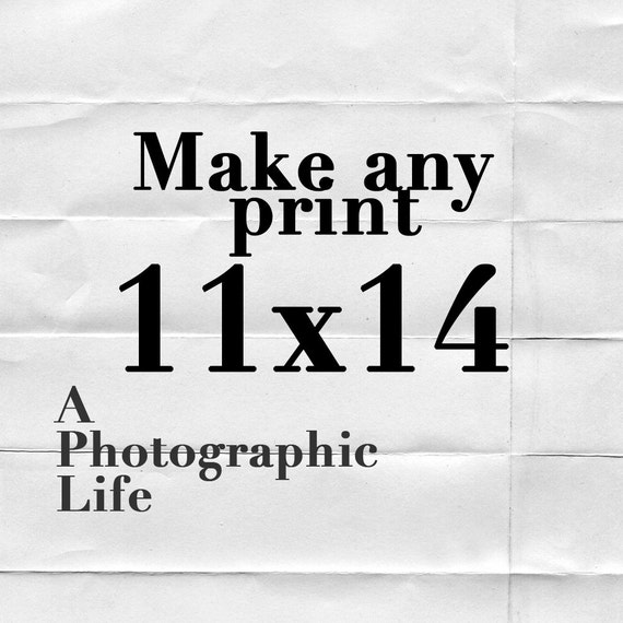 Choose an ((11x14)) size for any photo in my shop