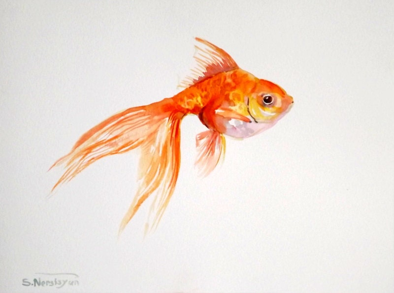Goldfish original watercolor painting 9 X 12 original fish