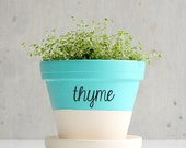 Herb Sticker Decals for Flower Pots, Gardens, Herbs, and Markers