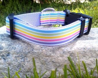 Pastel Rainbow Stripe 1 Inch Width Dog Collar
