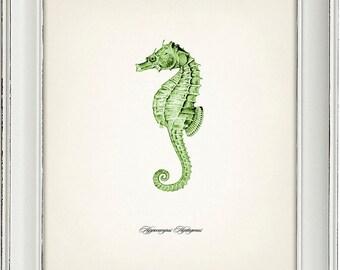 Green Seahorse Print 1 - 8x10 - Fine art print of a vintage natural history antique illustration