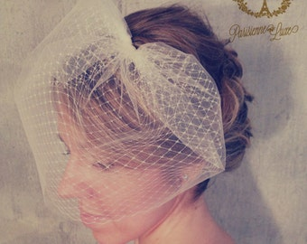 LOUISE - bird cage veil double layer, blusher veil, tulle & russian netting veil, bridal double birdcage veil, bridal veil, bird cage veil