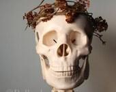 Spring, Nature, Boho, Hippie, Woodland, Skull, Fine Art Portrait - SamieSam