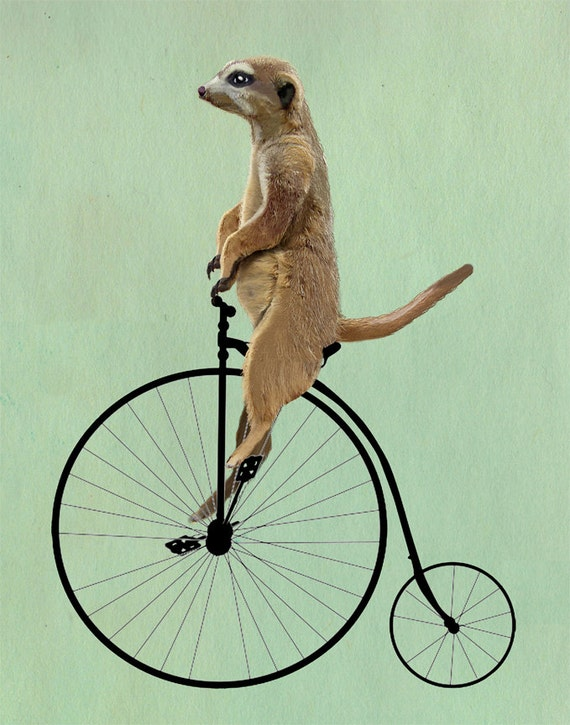 Meerkat on a Penny Farthing by LoopyLolly on Etsy