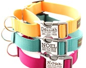 Buckle Martingale Dog Collar - Personalized with 18 Webbing Colors to Choose From