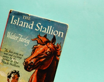 1940s Vintage Childrens Book / Horse Lovers Book / Collectible Childrens Book / Vintage Equestrian Book
