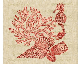 Vintage Red sea shells Coral Seahorse instant clip art Digital download image for iron on fabric transfer decoupage pillows cards No. 1834