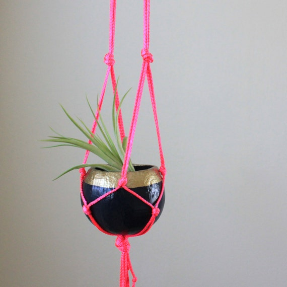Neon Macrame Hanging Planter with Tillandsia Air Plant in Pod Planter - Navy, Gold & Neon Pink