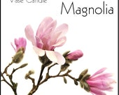 Magnolia Candle Refill for Vase Candle