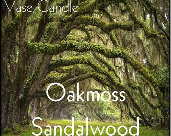 Oakmoss Sandalwood Vase Candle 2.8 oz Wax Melts - Highly Scented Hand Poured Fresh Premium Paraffin Soy Blend Wax Tarts, 25 Hour, Color Free