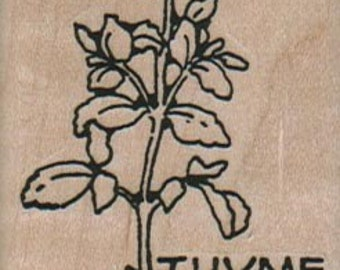 Rubber stamp mounted thyme herb stamp   number 12724  plant