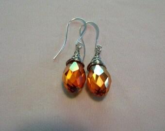 Tangerine Crystal Silver Enameled Copper Wire Wrapped Earrings
