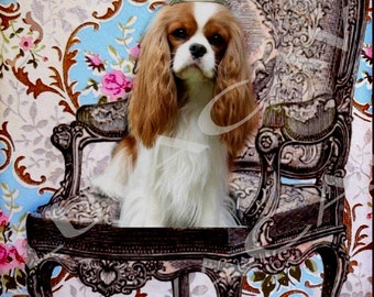 Blenheim Cavalier Photo Collage/Treat Me Like Royalty