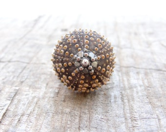 Sea Urchin Ring Sterling Silver Brown Sultan Ring