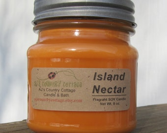 ISLAND NECTAR type SOY Candle - Highly Scented - Fruit, Mango, Pineapple, Berry, Coconut, Plumeria