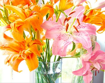 Hot Pink Orange Wall Art, Lily Daylily Still Life Photography,  LilyWall Decor, Neon Decor, Floral Art Print