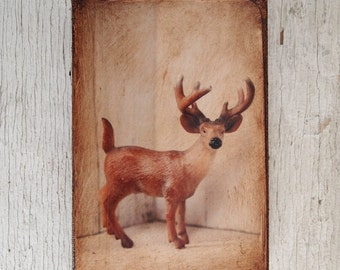 Toy Deer Art/Photo - Wall Art 4x6