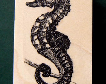 Seahorse rubber stamp WM vintage style 2.1x1.5 inches P5