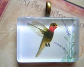 NEW  Hummingbird Original Watercolor Art Glass Tile Necklace