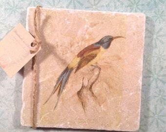 Marble trivet - Vintage Nepalese sun bird