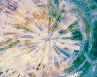 Petrified Wood Tie Dye Pastel Photograph Abstract Nature fine art 8x10 photo print teal wall art decor