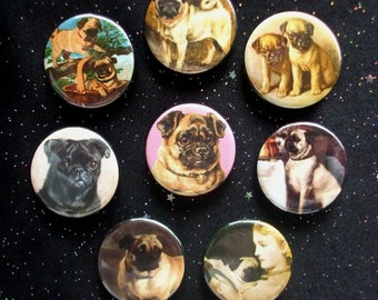 """Pugs 1.25"""" Magnets or Pinback Buttons - Set of 8"""
