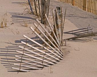 Sand Dune Sand Fence Beach Photography Beige Brown Golden Sand New Jersey Lustre Photo 11 x1 4 Fine Art Print Nature Photo Landscape Artwork