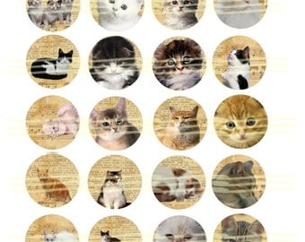 Instant Download - Cats  -  1 inch circles Digital Download - Printable  Digital Collage Sheet