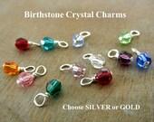 Birthstone Charm | Swarovski Birthstone Crystal | Birth Stone Swarvoski Faceted Round Charm 4 mm A La Carte Crystal Charm E. Ria Designs