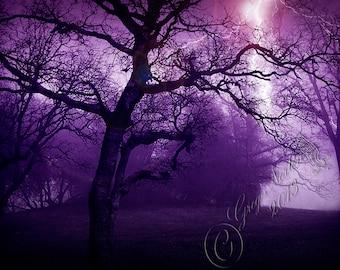 Lime Saddle Lightening: Digital Photograph, Lightning Sureal, Wall Art, cccoe team, purple, Surreal