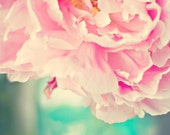 Fine art photography  - Peony flower vase image, Cottage style photography print -  pale pink peony