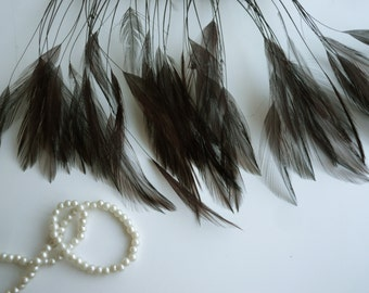 STRIPPED COQUE HACKLE / Dark Chocolate Brown  / 1159