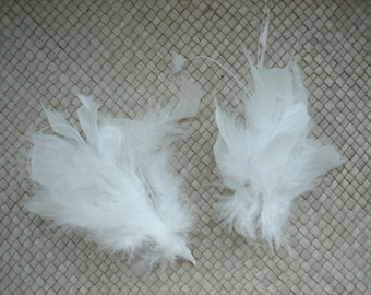 FEATHER  SPRAY,  Pearl White / 856 / Rollback