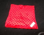 Bright red and black  double minky  lovey
